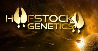 NSH-Hoofstock-Genetics