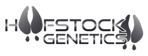 National-Brahman-Show-Sponsor-Hoofstock-Genetics